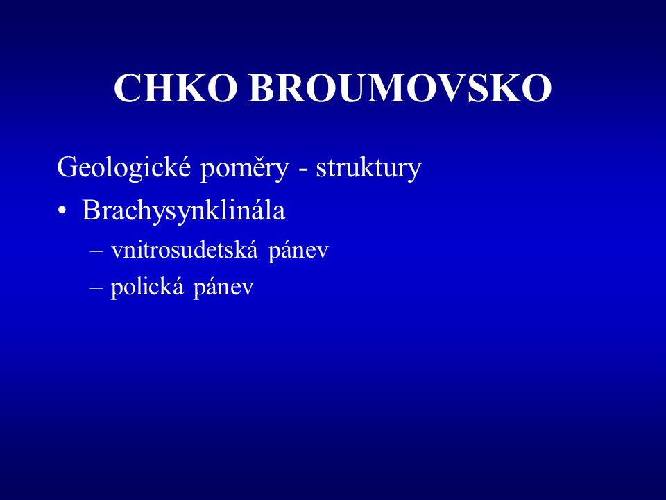 CHKO BROUMOVSKO Geologické poměry - struktury Brachysynklinála