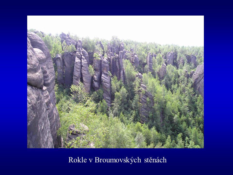 Rokle v Broumovských stěnách