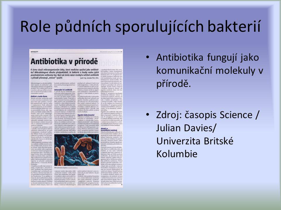 Role půdních sporulujících bakterií