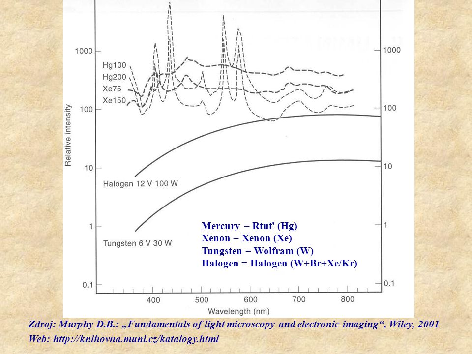Mercury = Rtuť (Hg) Xenon = Xenon (Xe) Tungsten = Wolfram (W) Halogen = Halogen (W+Br+Xe/Kr)
