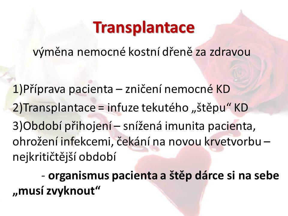 Transplantace výměna nemocné kostní dřeně za zdravou