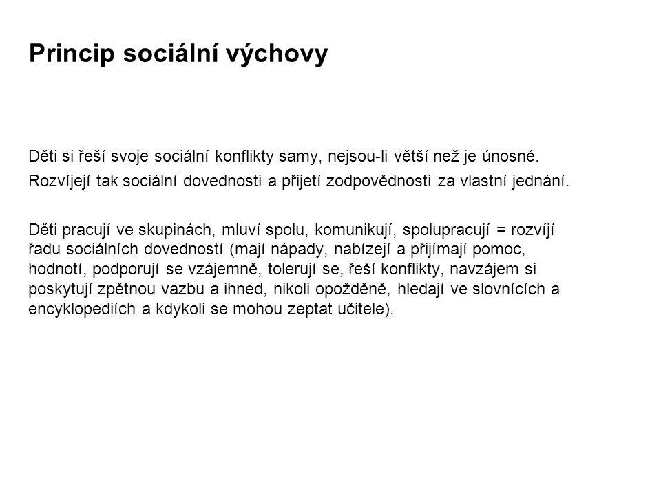 Princip sociální výchovy