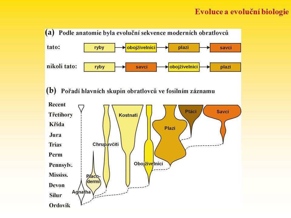 LZE EVOLUCI DOKÁZAT hierarchické uspořádání