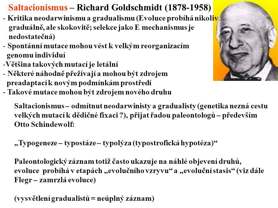 Saltacionismus – Richard Goldschmidt (1878-1958)