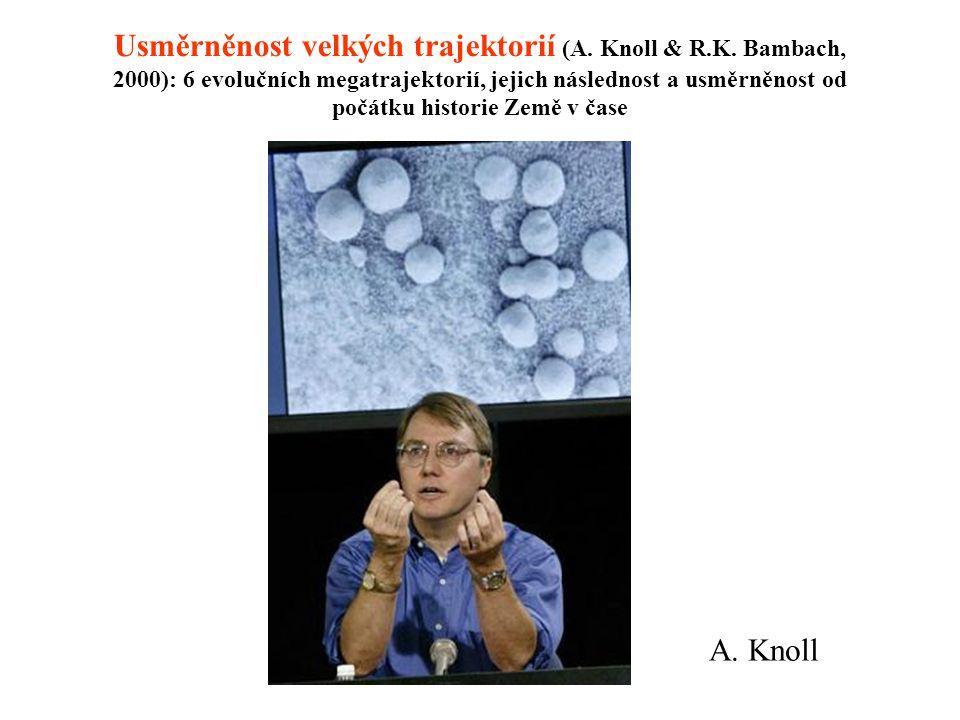 Usměrněnost velkých trajektorií (A. Knoll & R. K