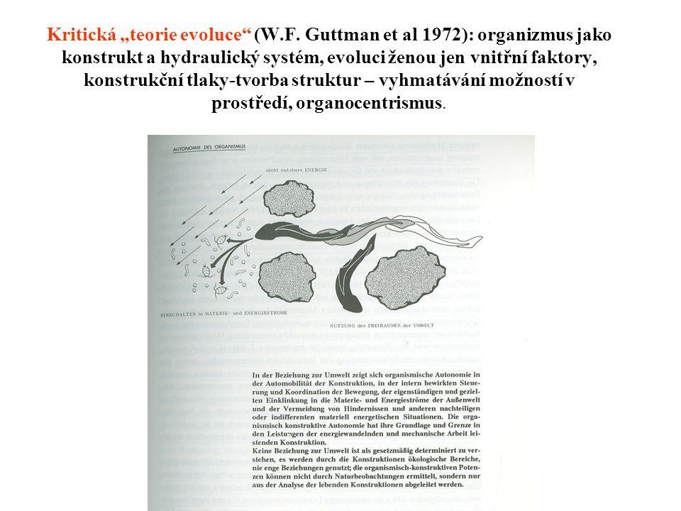 "Kritická ""teorie evoluce (W. F"