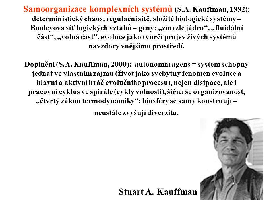 Samoorganizace komplexních systémů (S. A