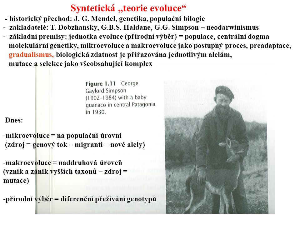 """Syntetická """"teorie evoluce"""