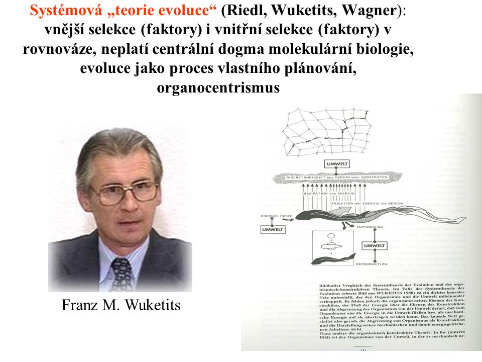 """Systémová """"teorie evoluce (Riedl, Wuketits, Wagner): vnější selekce (faktory) i vnitřní selekce (faktory) v rovnováze, neplatí centrální dogma molekulární biologie, evoluce jako proces vlastního plánování, organocentrismus"""