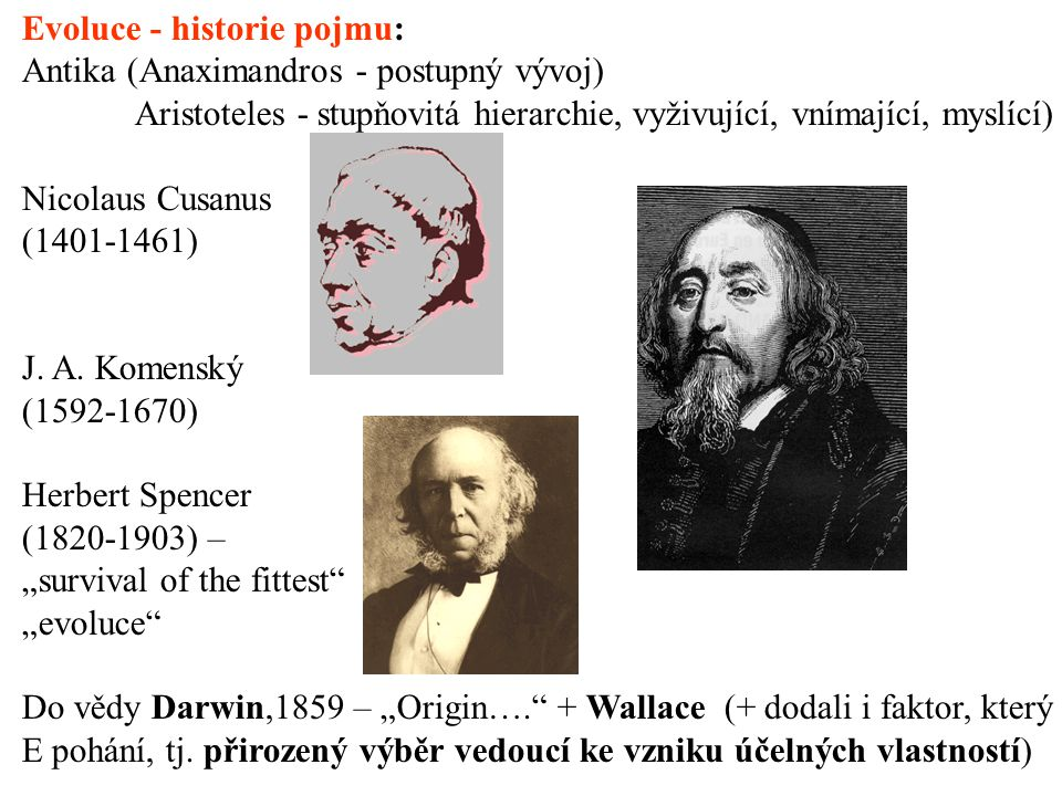 Evoluce - historie pojmu: