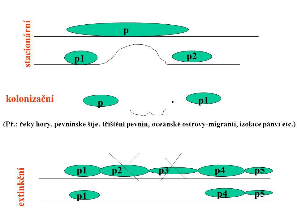 p stacionární p2 p1 kolonizační p1 p p1 p2 p3 p4 p5 extinkční p4 p5 p1