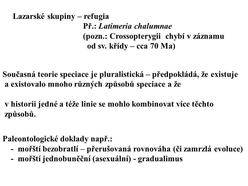 Lazarské skupiny – refugia