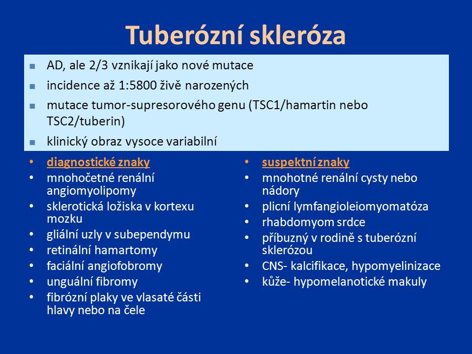 Tuberózní skleróza AD, ale 2/3 vznikají jako nové mutace
