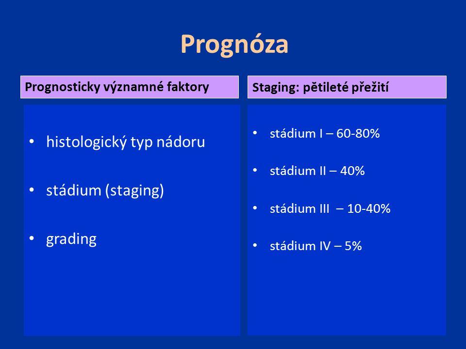 Prognóza histologický typ nádoru stádium (staging) grading