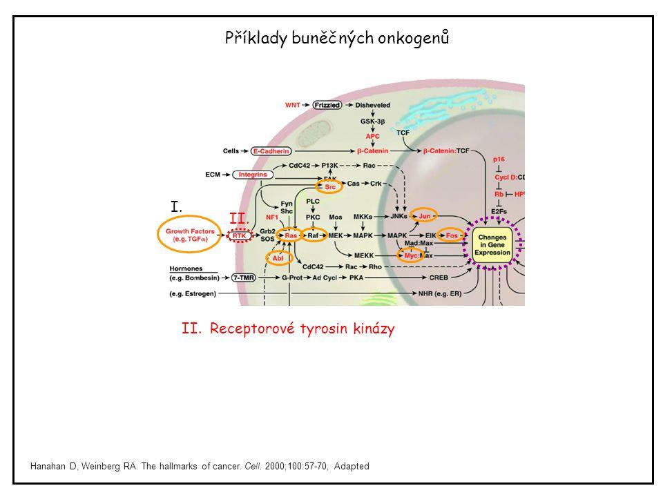 Příklady buněčných onkogenů