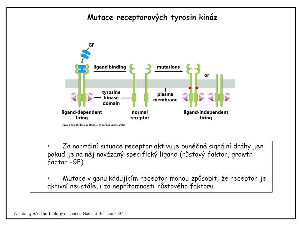 Mutace receptorových tyrosin kináz