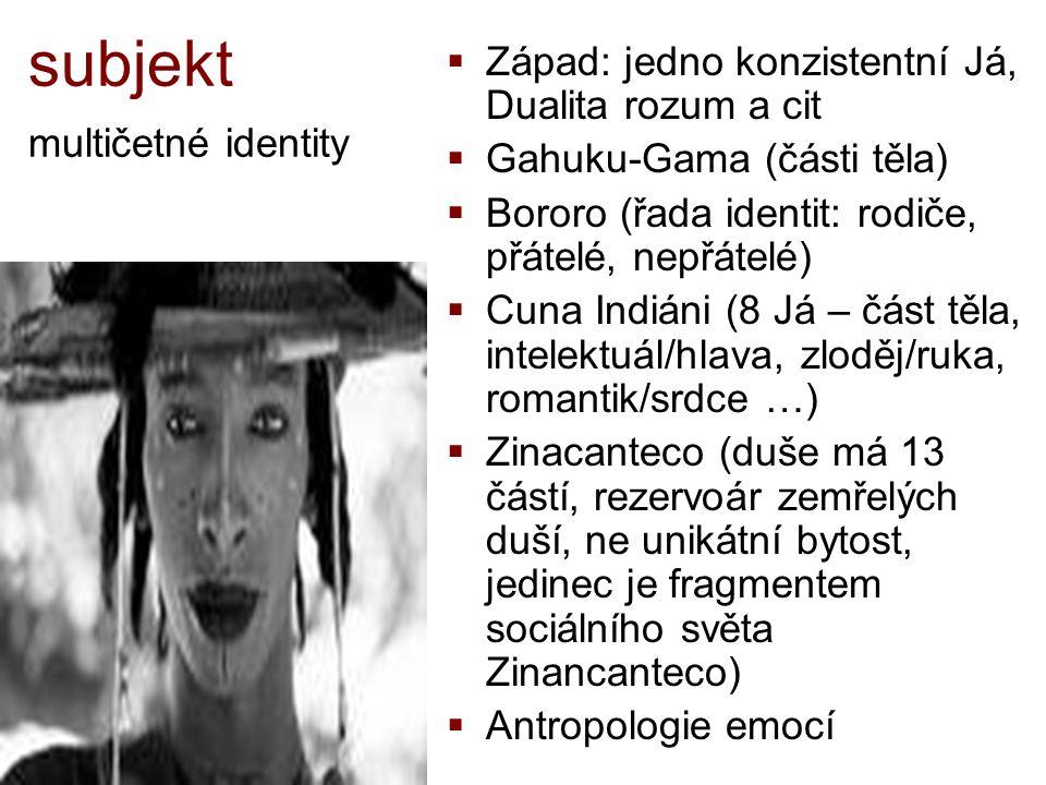 subjekt multičetné identity