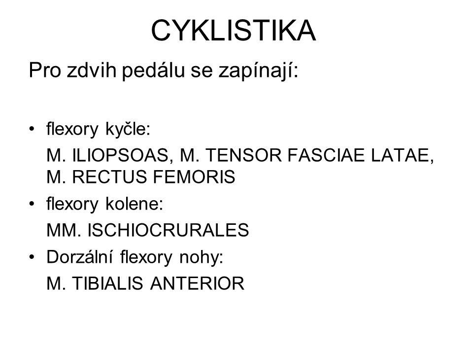 CYKLISTIKA Pro zdvih pedálu se zapínají: flexory kyčle: