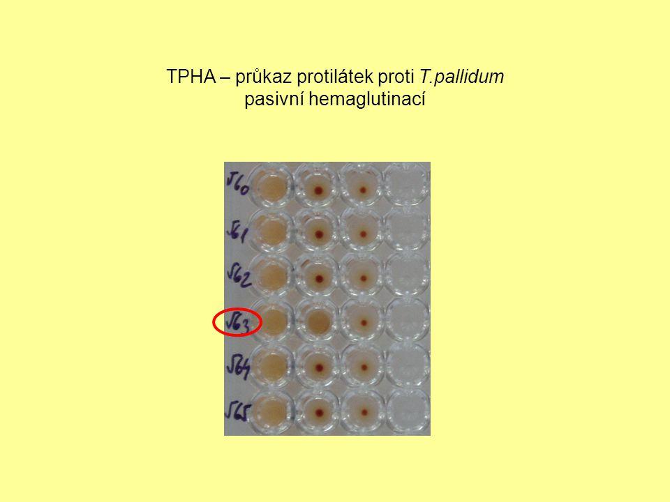 TPHA – průkaz protilátek proti T.pallidum pasivní hemaglutinací