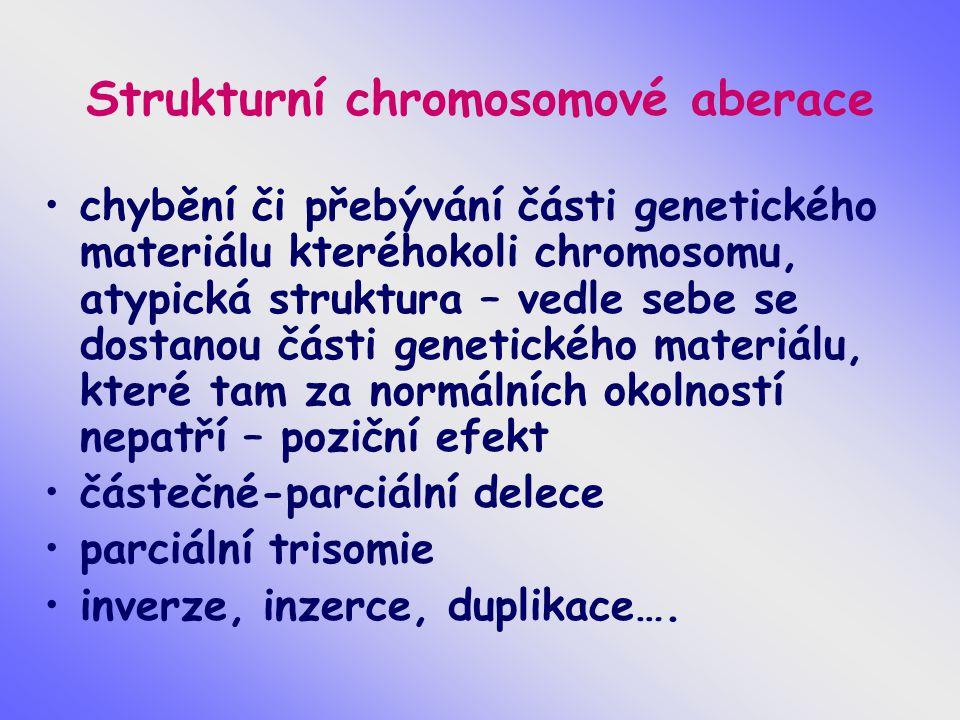 Strukturní chromosomové aberace