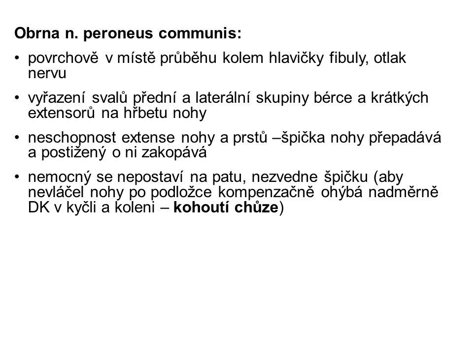 Obrna n. peroneus communis: