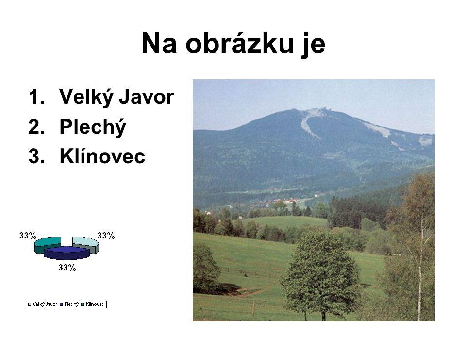 Na obrázku je Velký Javor Plechý Klínovec