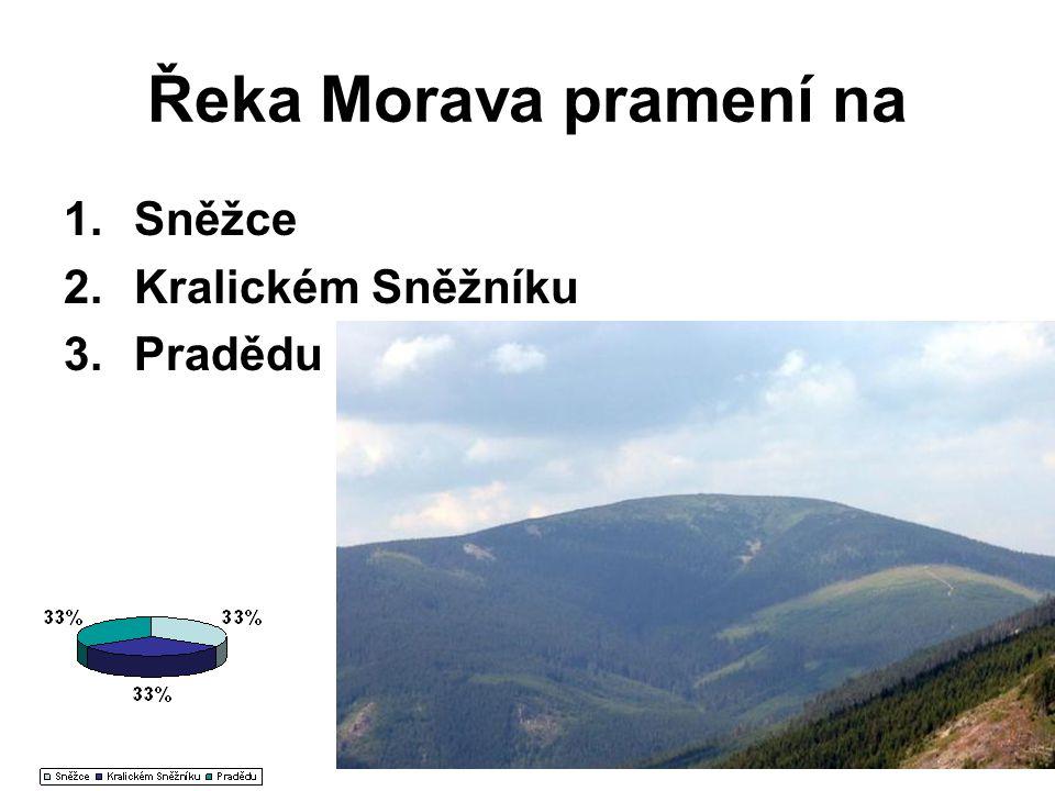 Řeka Morava pramení na Sněžce Kralickém Sněžníku Pradědu