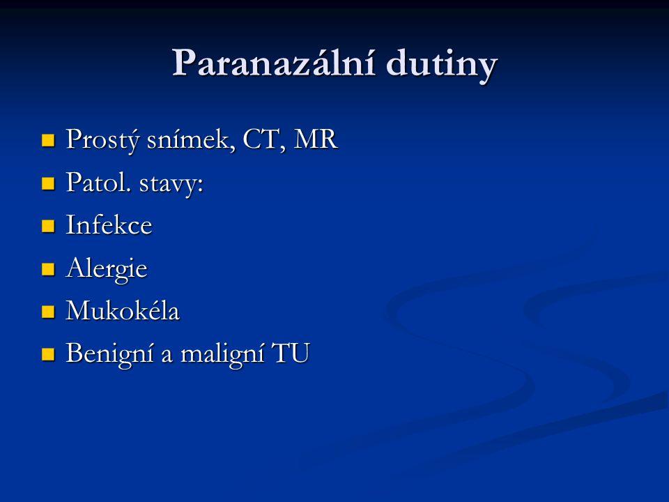 Paranazální dutiny Prostý snímek, CT, MR Patol. stavy: Infekce Alergie