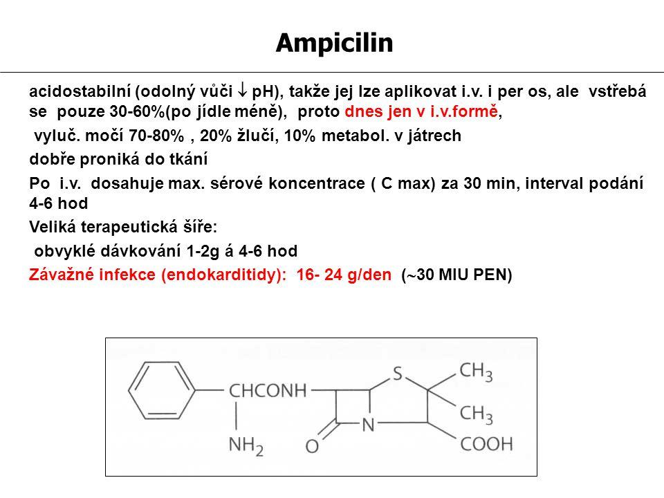 Ampicilin