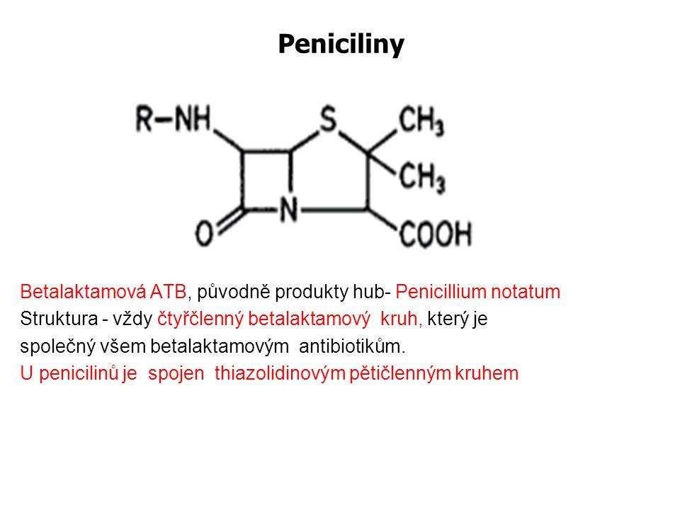 Peniciliny Betalaktamová ATB, původně produkty hub- Penicillium notatum. Struktura - vždy čtyřčlenný betalaktamový kruh, který je.