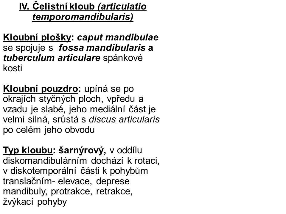 IV. Čelistní kloub (articulatio temporomandibularis)