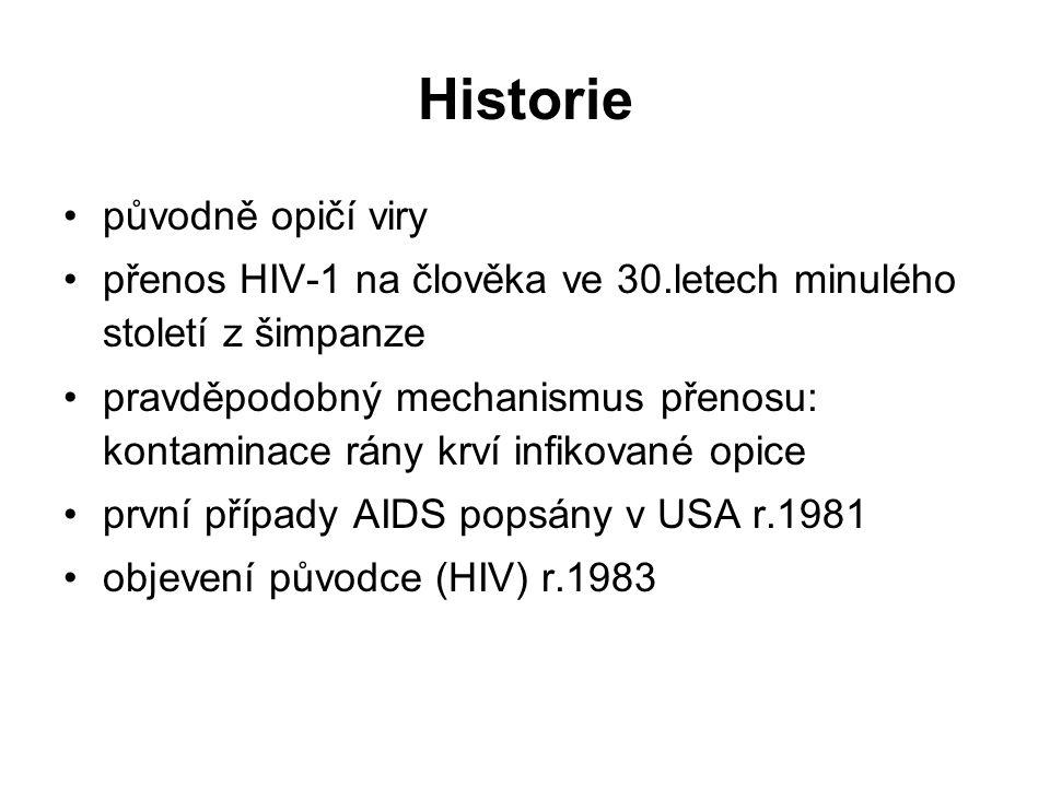 Historie původně opičí viry