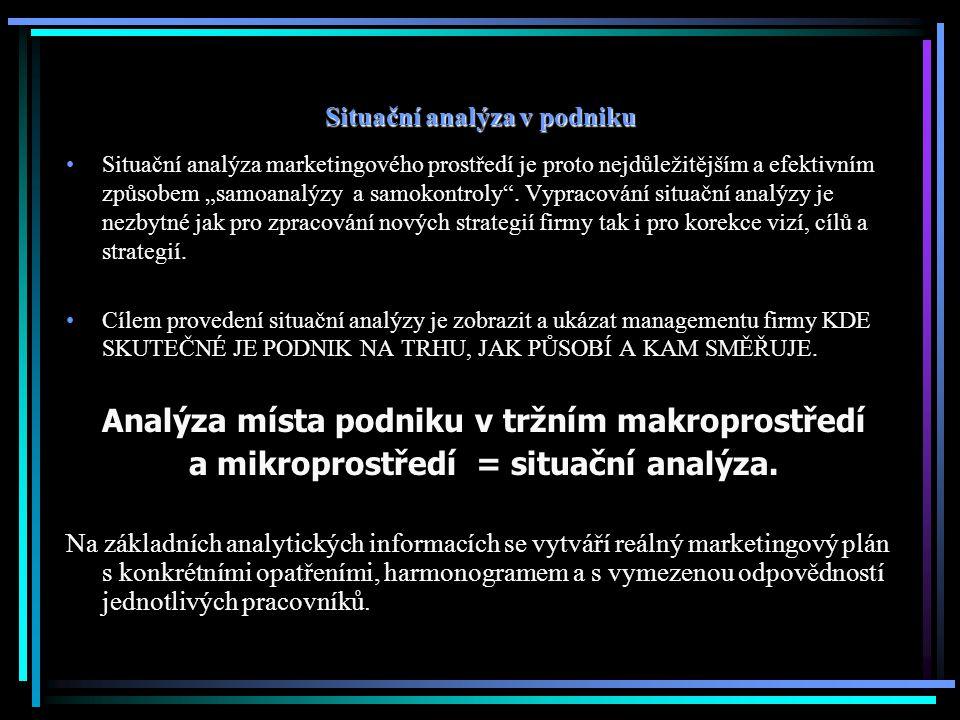 Situační analýza v podniku