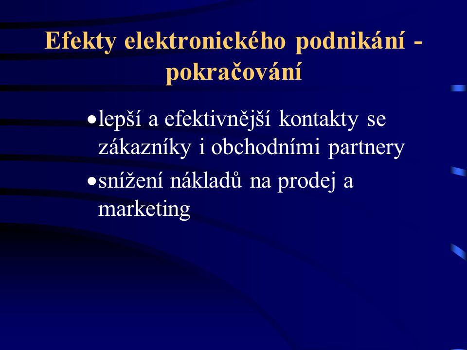 Efekty elektronického podnikání - pokračování