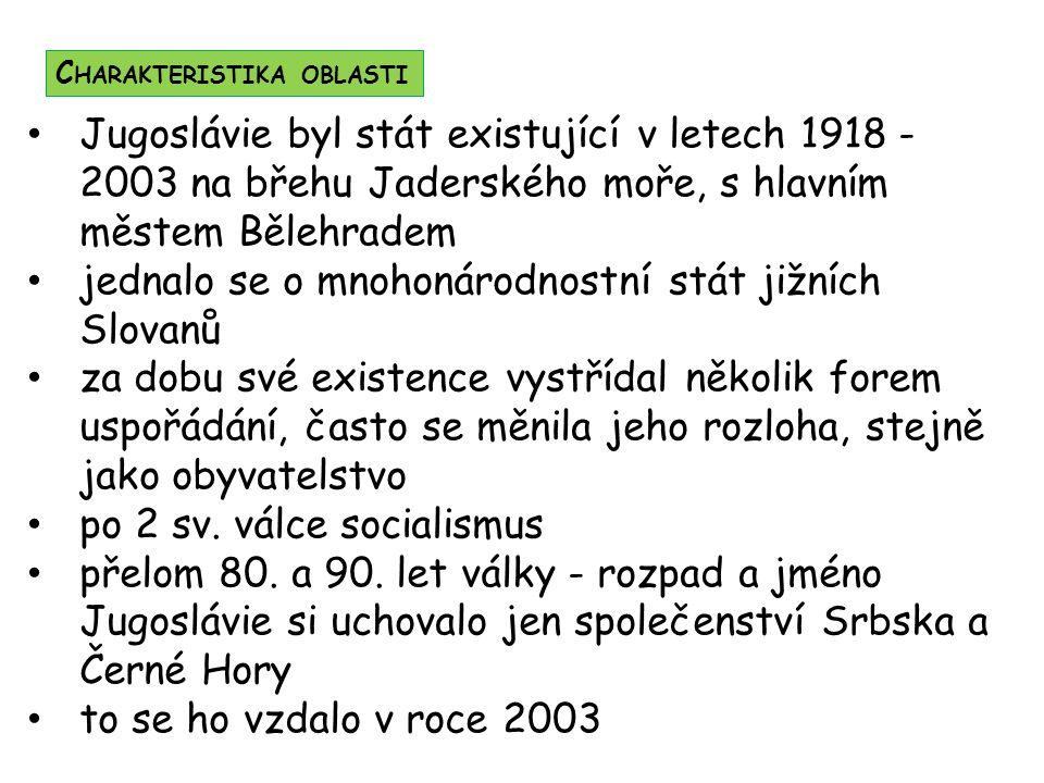 jednalo se o mnohonárodnostní stát jižních Slovanů