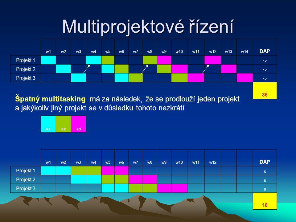 Multiprojektové řízení