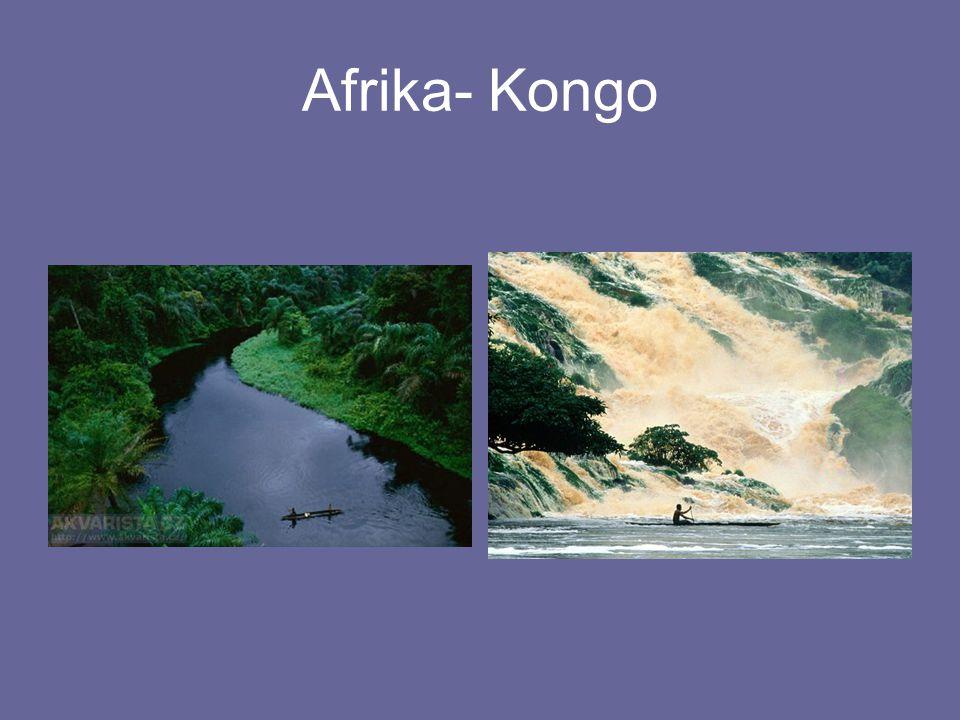 Afrika- Kongo