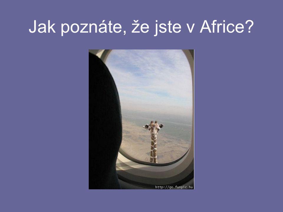 Jak poznáte, že jste v Africe
