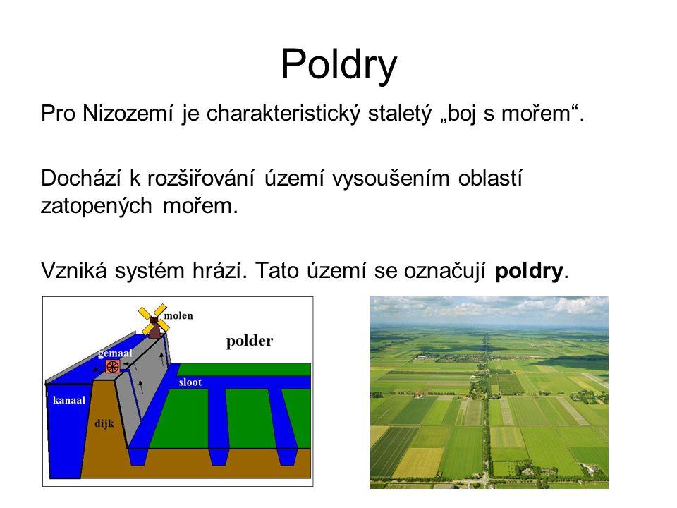 Poldry