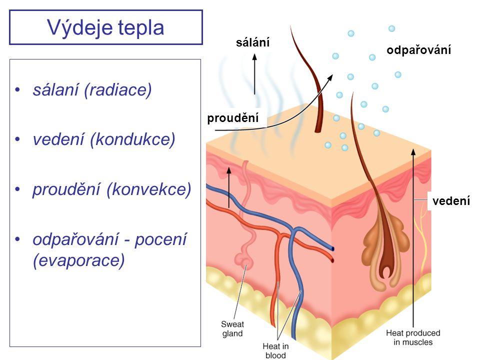 Výdeje tepla sálaní (radiace) vedení (kondukce) proudění (konvekce)