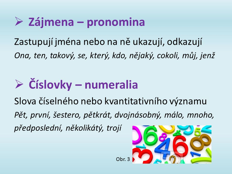 Zájmena – pronomina Číslovky – numeralia