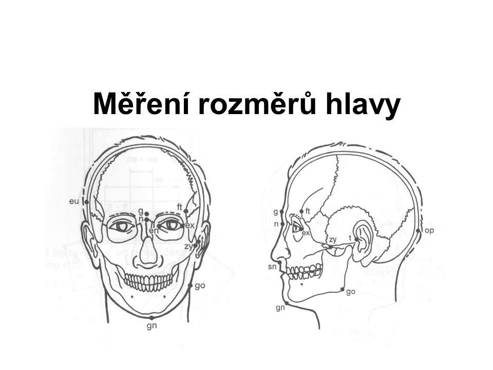 Měření rozměrů hlavy