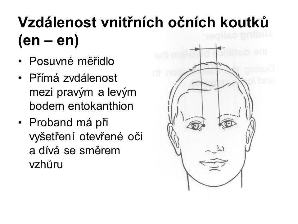 Vzdálenost vnitřních očních koutků (en – en)