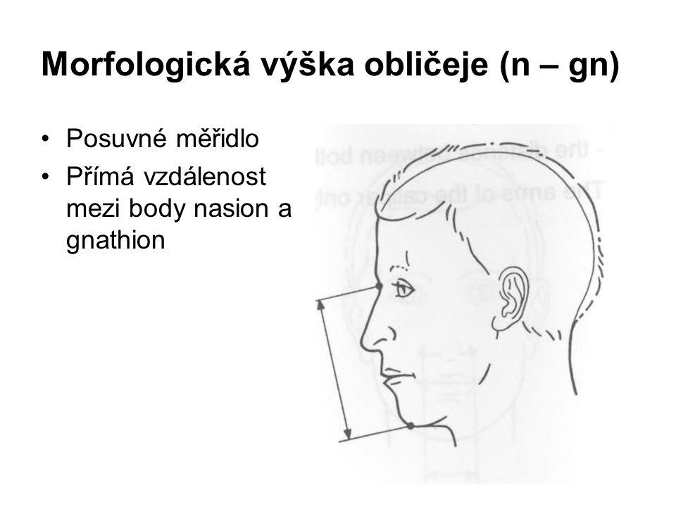 Morfologická výška obličeje (n – gn)