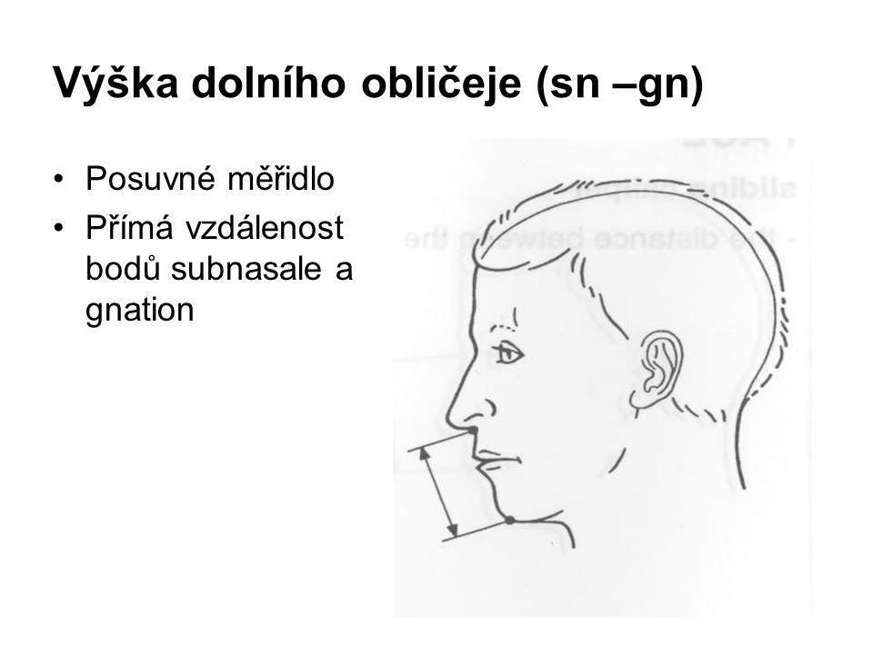 Výška dolního obličeje (sn –gn)