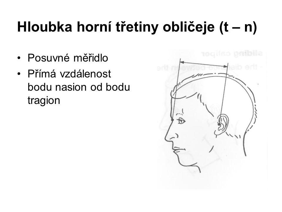 Hloubka horní třetiny obličeje (t – n)