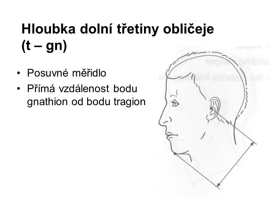 Hloubka dolní třetiny obličeje (t – gn)