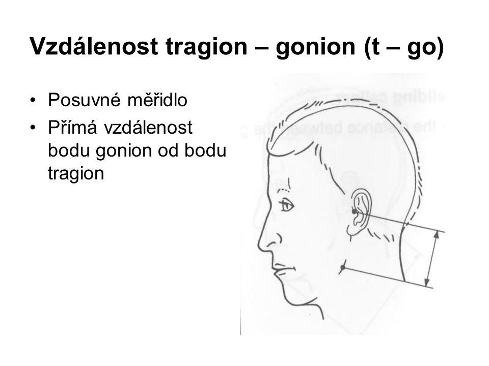 Vzdálenost tragion – gonion (t – go)
