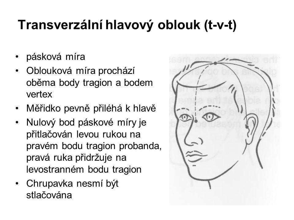 Transverzální hlavový oblouk (t-v-t)