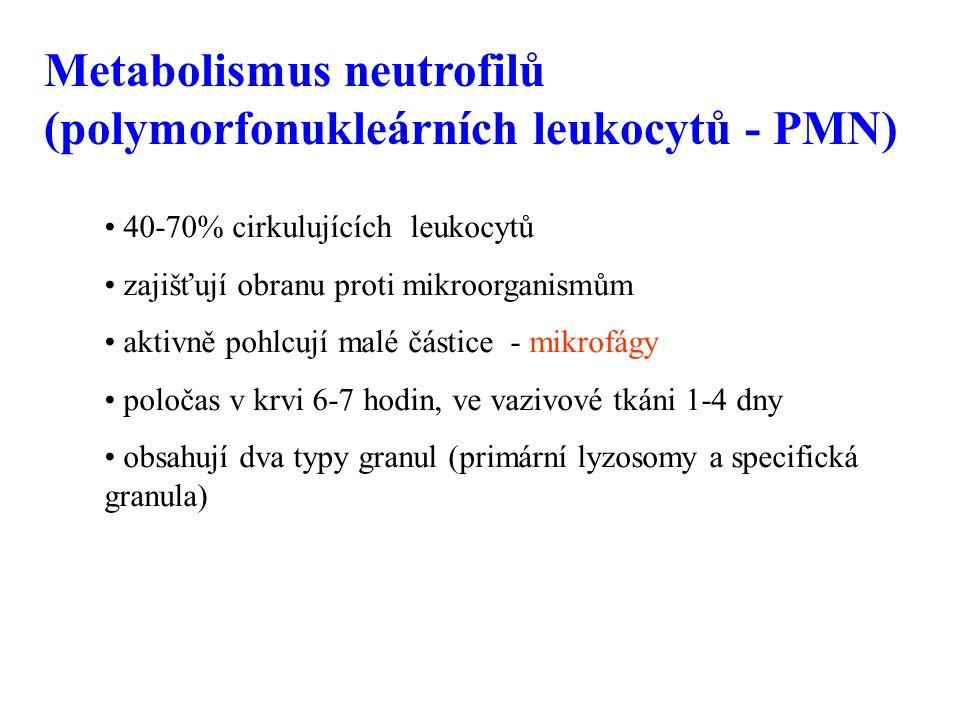 Metabolismus neutrofilů (polymorfonukleárních leukocytů - PMN)